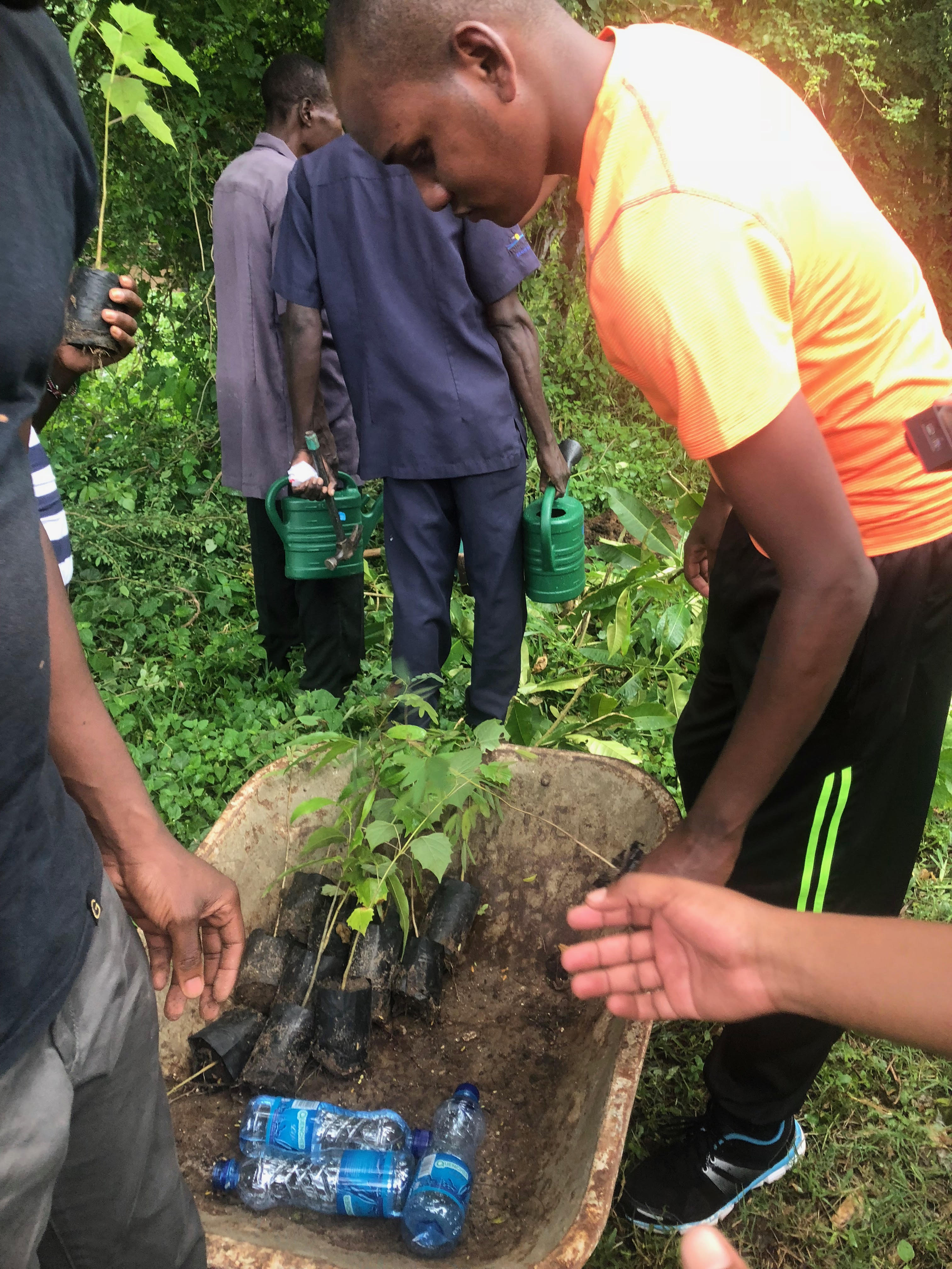 The Competition Authority of Kenya (CAK) tree planting exercise in Kwale – June 2018.